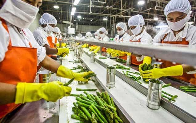 Gıda Mühendisliği Çalışma Alanları ve Maaşları