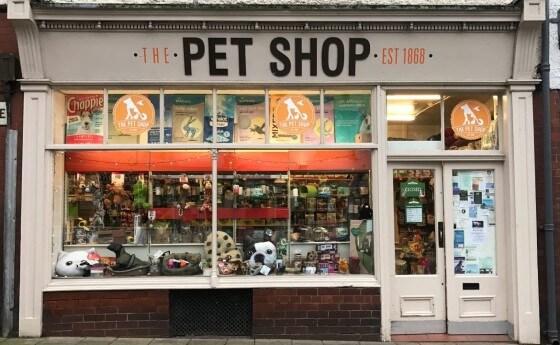 Pet Shop Dükkanı Açmak