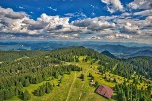 Bulgaristan'da Çalışmak İçin Diğer Yollar